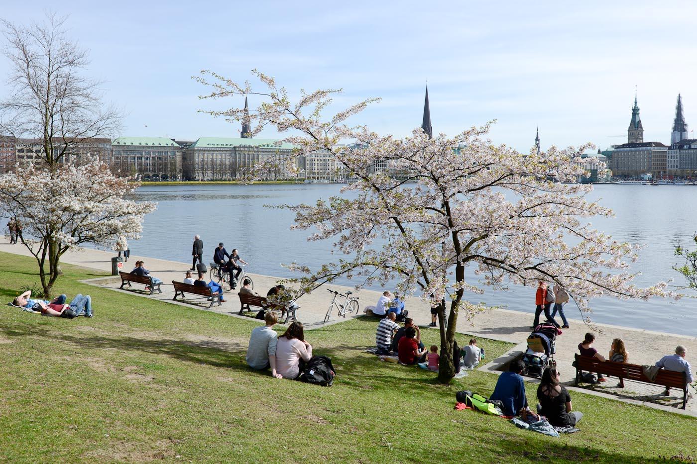 Foto ID 15042044 Frühling Alster Hamburg, Blick auf die Binnenalster und den Jungfernstieg